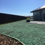 Hydroseeding in Christchurch and Canterbury